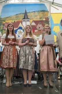 38 Dertinger Weinfest